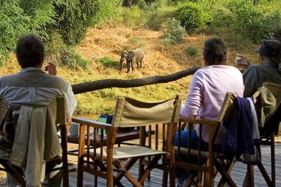 Choosing The Best Safari Destination In Kenya